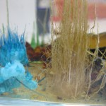 cheveux du sel de manganèse