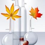 verrerie et automne