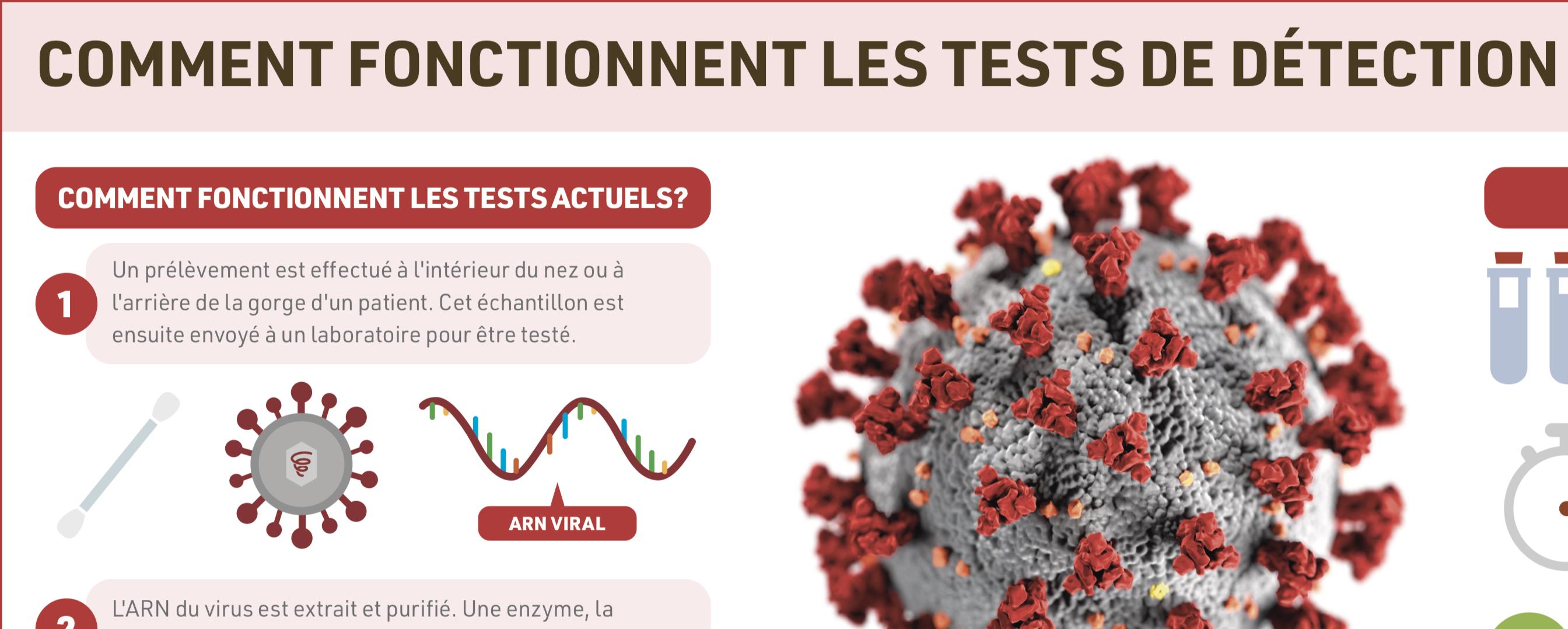 Infographies sur le Coronavirus